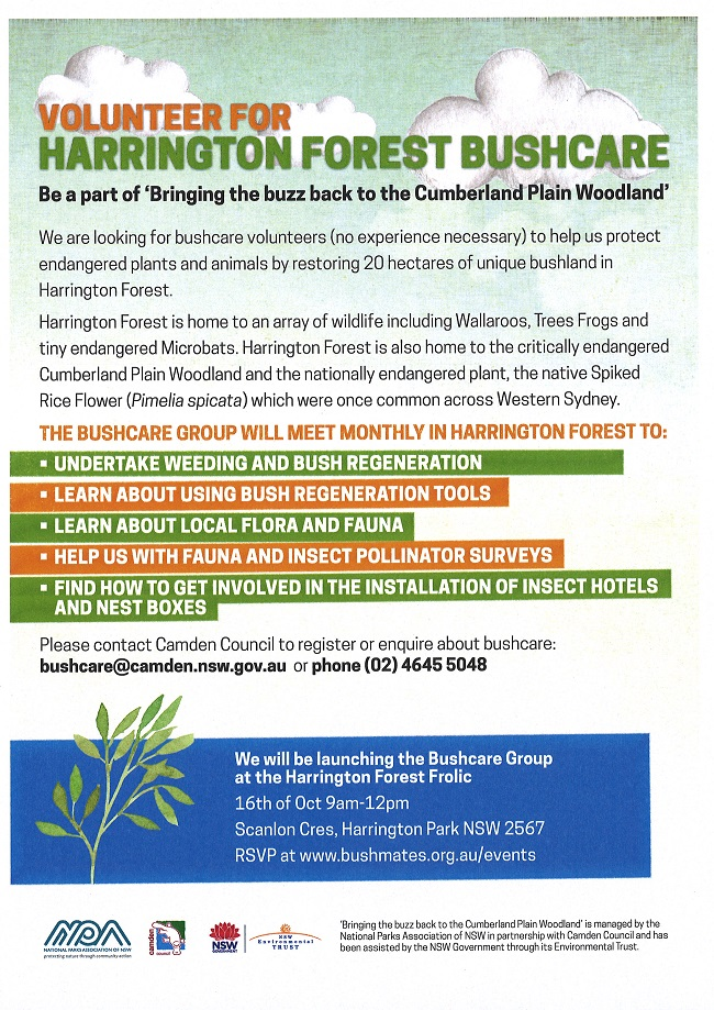 HARRINGTON FOREST BUSHCARE